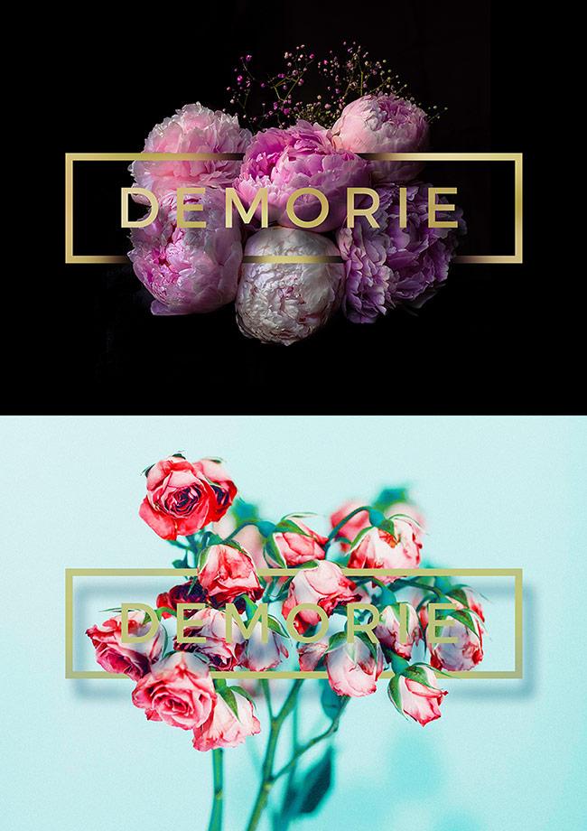 Demorie Design